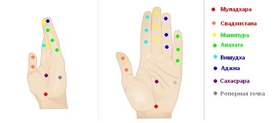 Схема биологически  активных точек на ладонях человека