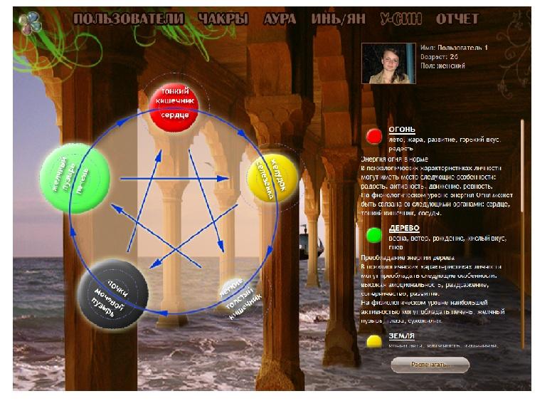 Программа Цикл У-Син